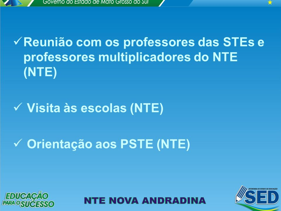Reunião com os professores das STEs e professores multiplicadores do NTE (NTE) Visita às escolas (NTE) Orientação aos PSTE (NTE)