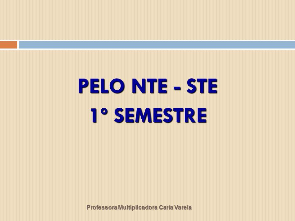 Professora Multiplicadora Carla Varela PELO NTE - STE 1º SEMESTRE