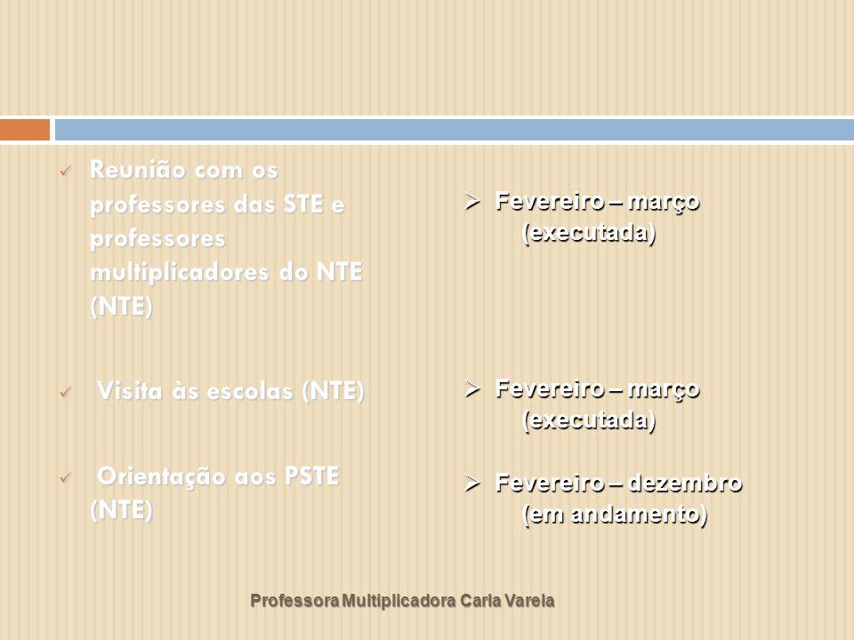 Professora Multiplicadora Carla Varela Reunião com os professores das STE e professores multiplicadores do NTE (NTE) Reunião com os professores das STE e professores multiplicadores do NTE (NTE) Visita às escolas (NTE) Visita às escolas (NTE) Orientação aos PSTE (NTE) Orientação aos PSTE (NTE) Fevereiro – março Fevereiro – março (executada) (executada) Fevereiro – março Fevereiro – março (executada) (executada) Fevereiro – dezembro Fevereiro – dezembro (em andamento) (em andamento)