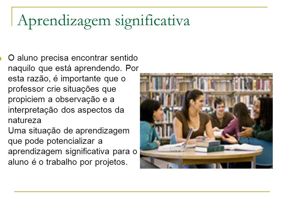 Aprendizagem significativa O aluno precisa encontrar sentido naquilo que está aprendendo. Por esta razão, é importante que o professor crie situações