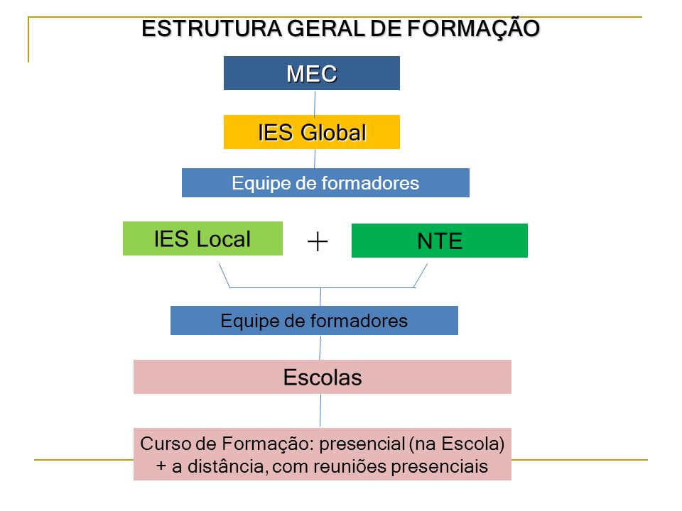 ESTRUTURA GERAL DE FORMAÇÃO MEC IES Global IES Local NTE + Equipe de formadores Curso de Formação: presencial (na Escola) + a distância, com reuniões