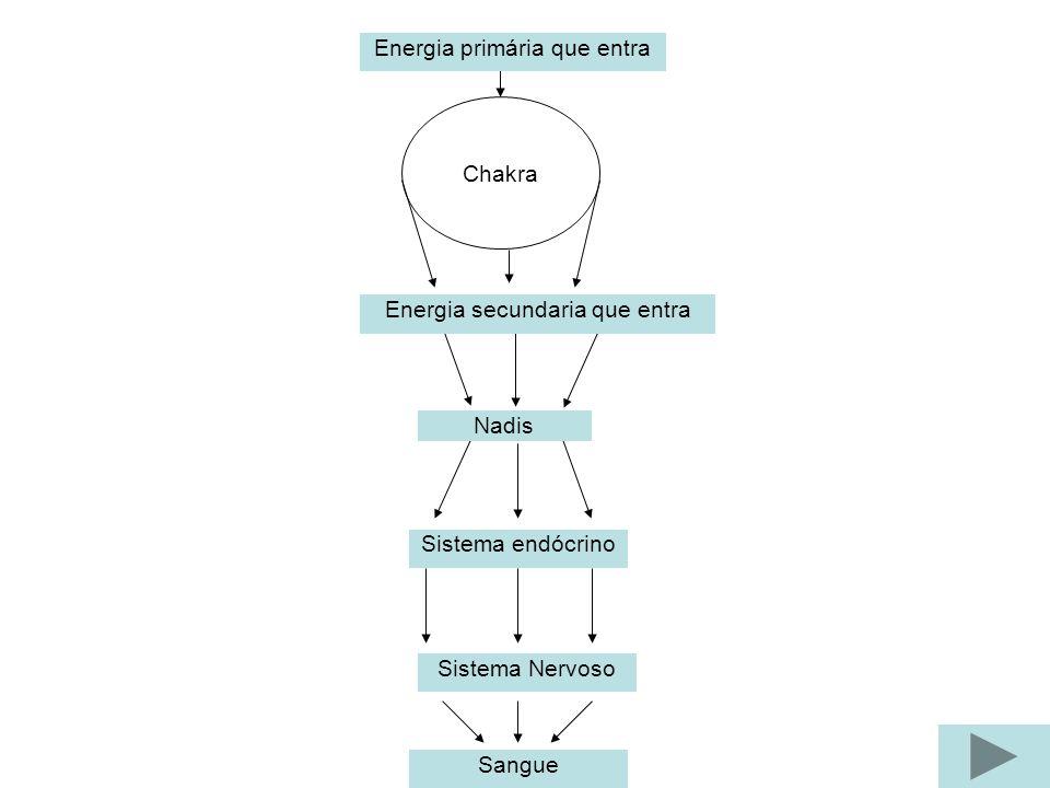 Chakra Nadis Sistema Nervoso Sistema endócrino Sangue Energia primária que entra Energia secundaria que entra