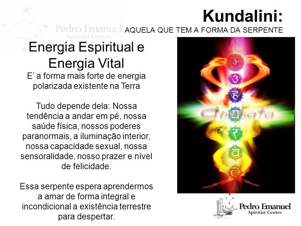 Kundalini: AQUELA QUE TEM A FORMA DA SERPENTE Energia Espiritual e Energia Vital E a forma mais forte de energia polarizada existente na Terra Tudo de