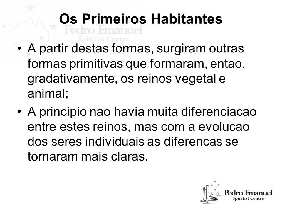 Os Primeiros Habitantes A partir destas formas, surgiram outras formas primitivas que formaram, entao, gradativamente, os reinos vegetal e animal; A p