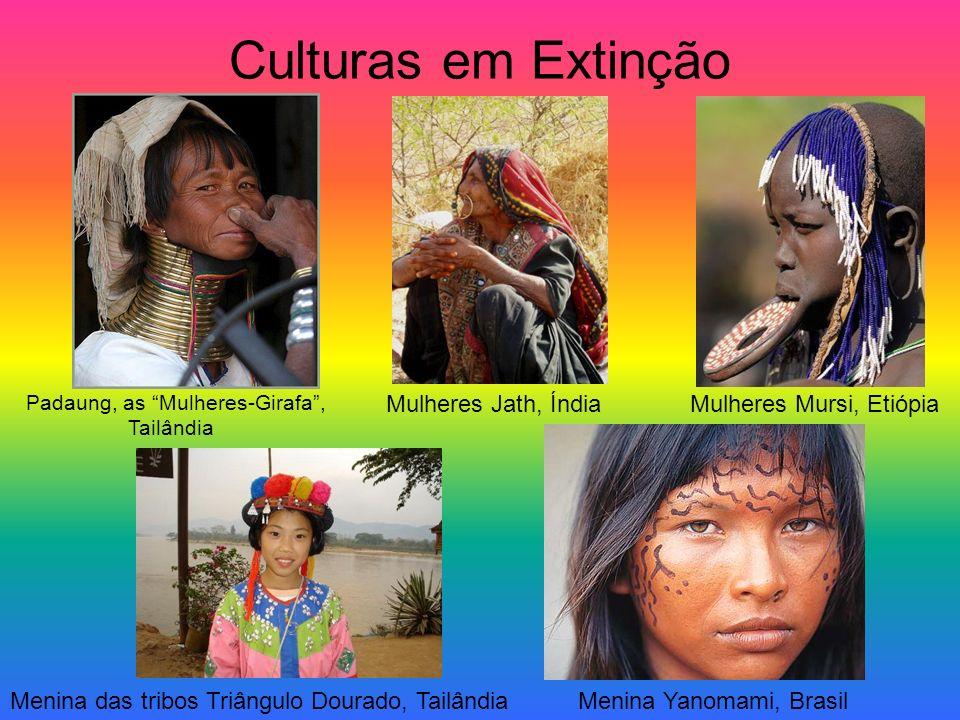Diversidade cultural em Portugal Raça: branca; Língua: português; Religião: cristianismo; Festividades: festa dos Tabuleiros (Tomar), romarias, etc.;