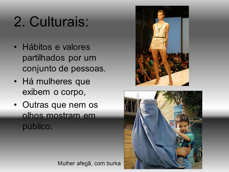 2.Culturais: Hábitos e valores partilhados por um conjunto de pessoas.