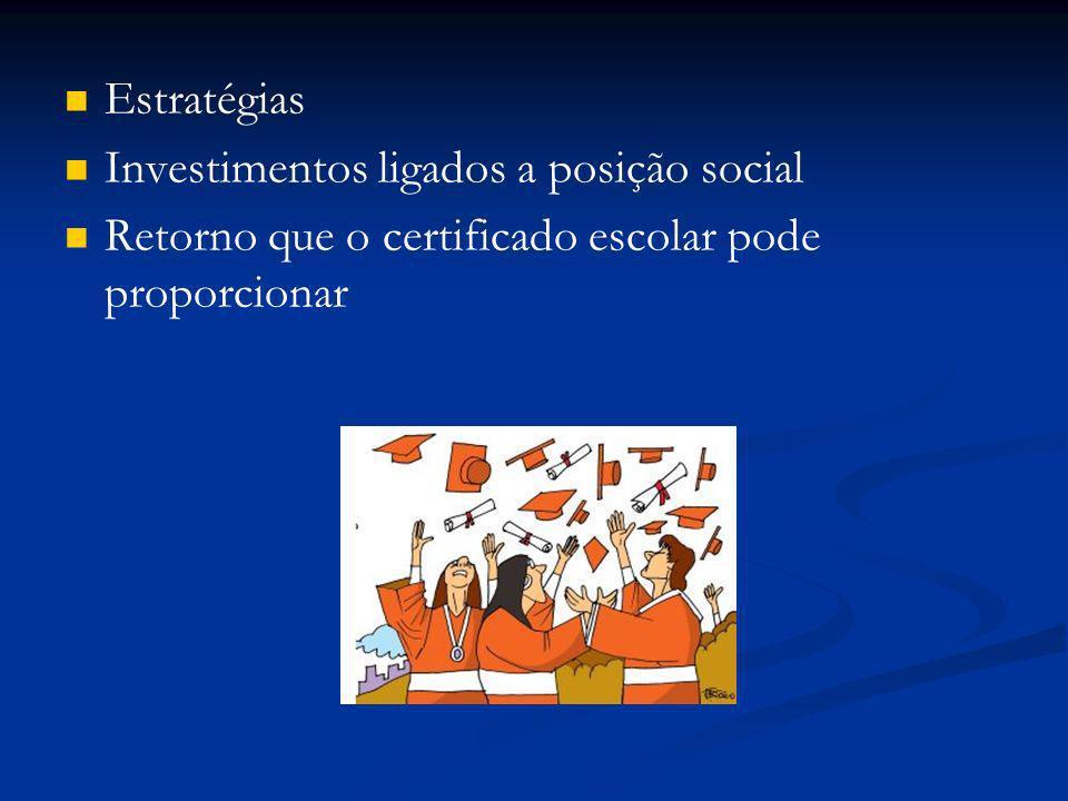 Estratégias Investimentos ligados a posição social Retorno que o certificado escolar pode proporcionar