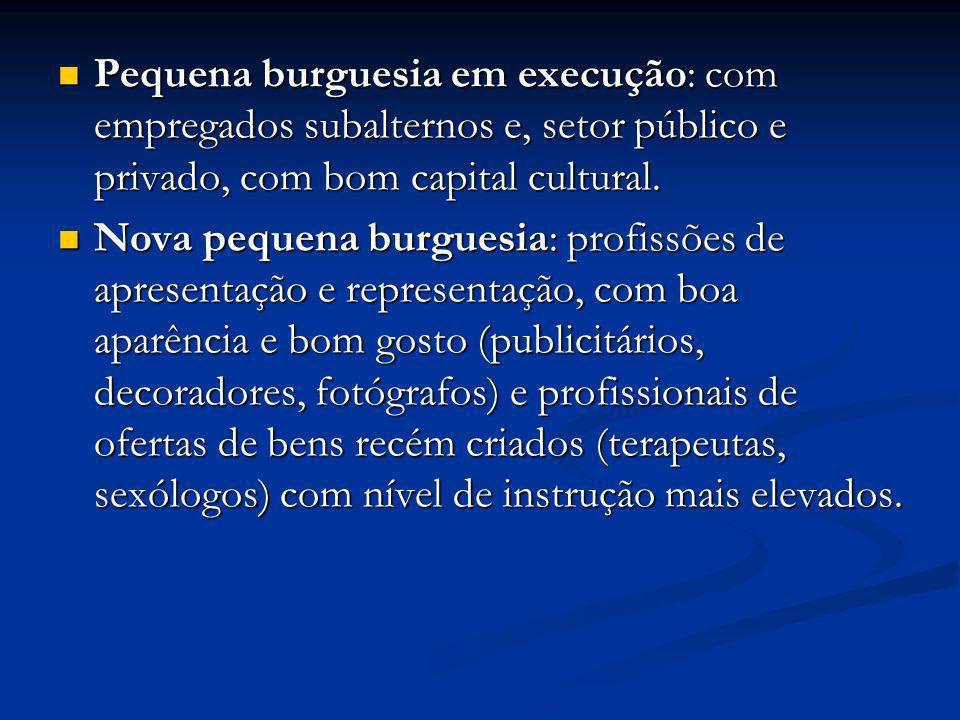 Pequena burguesia em execução: com empregados subalternos e, setor público e privado, com bom capital cultural. Pequena burguesia em execução: com emp