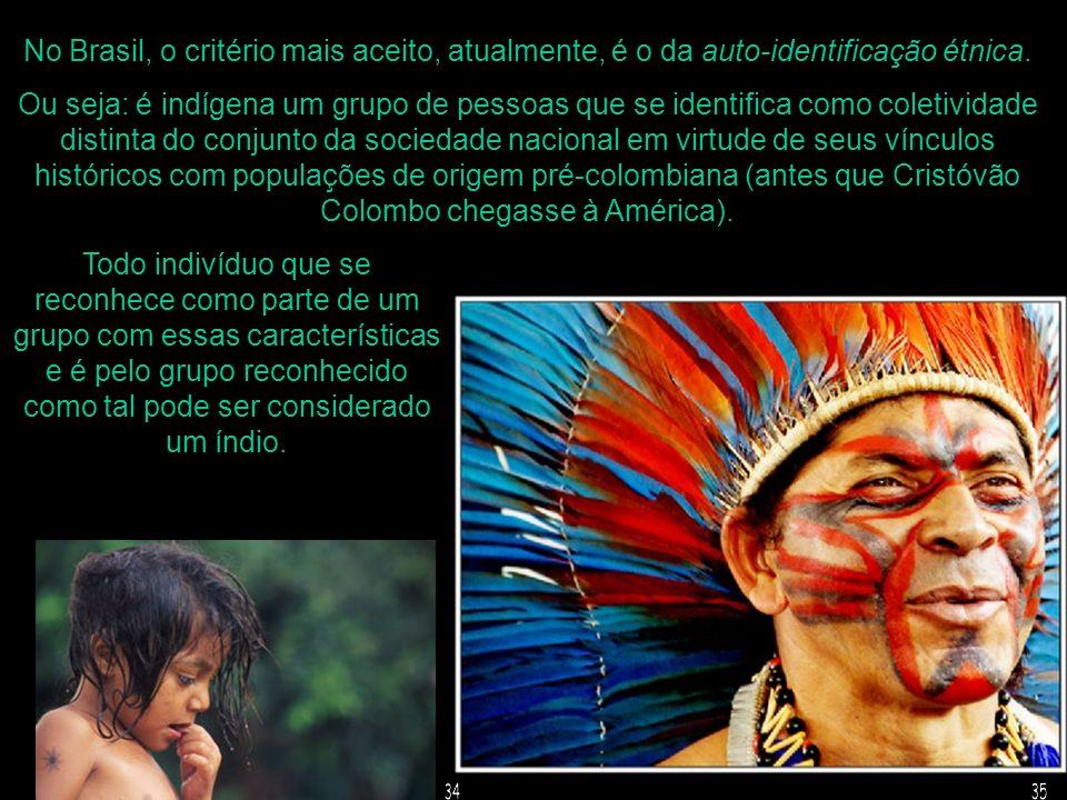 No Brasil, o critério mais aceito, atualmente, é o da auto-identificação étnica. Ou seja: é indígena um grupo de pessoas que se identifica como coleti