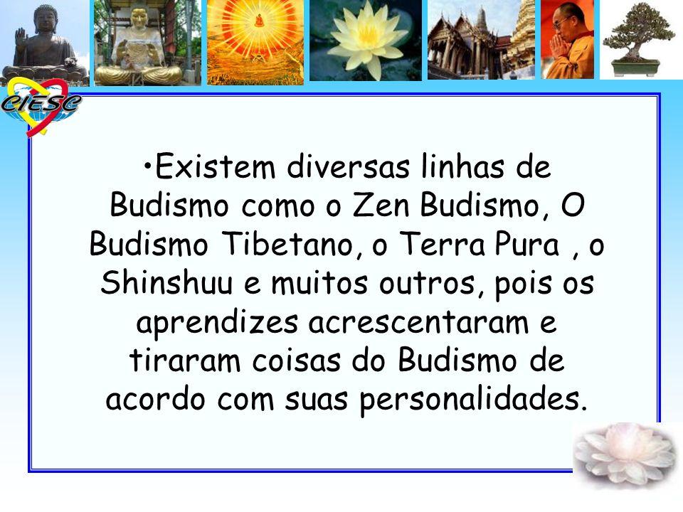 Existem diversas linhas de Budismo como o Zen Budismo, O Budismo Tibetano, o Terra Pura, o Shinshuu e muitos outros, pois os aprendizes acrescentaram