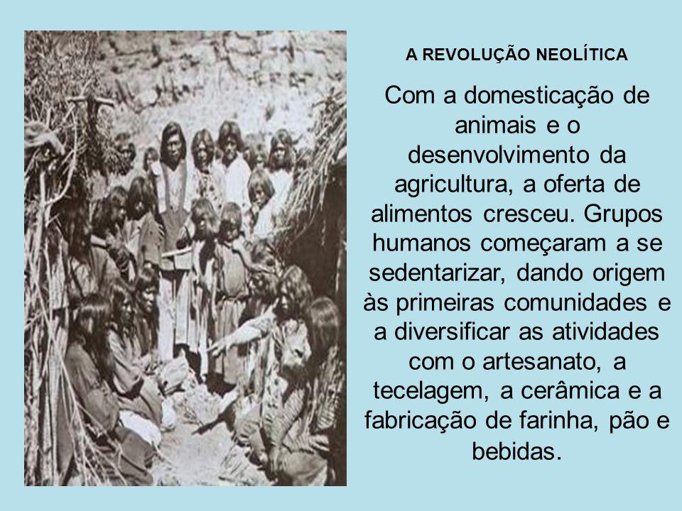 A REVOLUÇÃO NEOLÍTICA Com a domesticação de animais e o desenvolvimento da agricultura, a oferta de alimentos cresceu. Grupos humanos começaram a se s