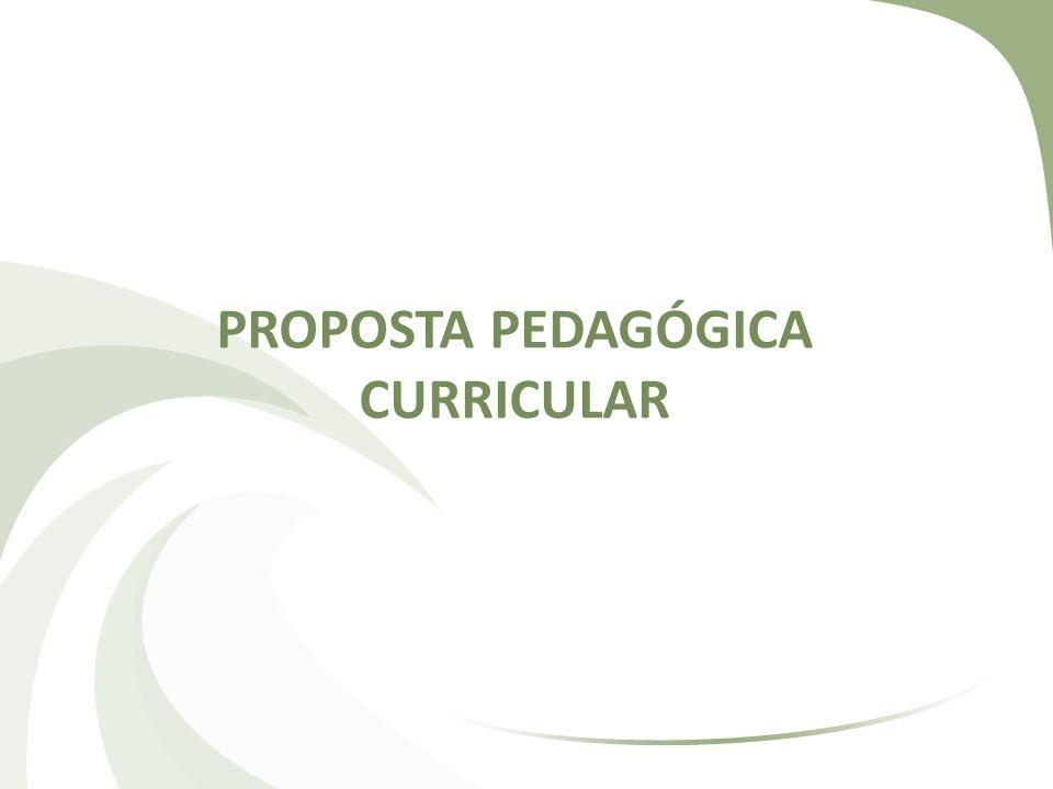 ORIENTAÇÕES GERAIS A Proposta Pedagógica Curricular é um documento que deve ser elaborado, em conjunto, por todos os professores que ministram determinada disciplina no Estabelecimento de Ensino, conforme se apresenta na LDB no artigo 13.