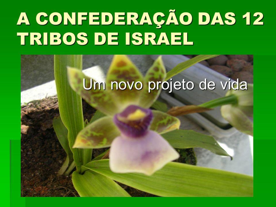 A CONFEDERAÇÃO DAS 12 TRIBOS DE ISRAEL Um novo projeto de vida