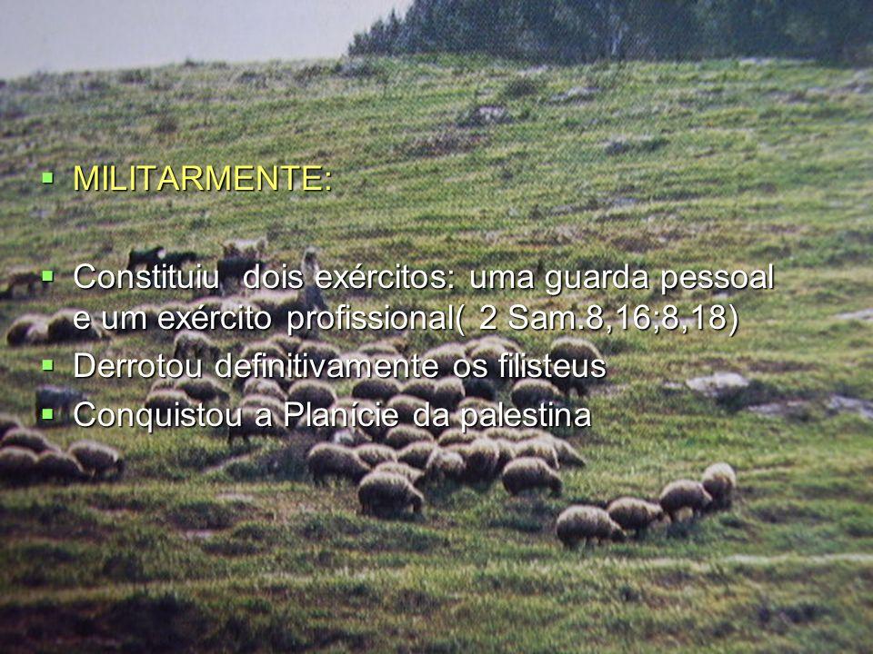 MILITARMENTE: MILITARMENTE: Constituiu dois exércitos: uma guarda pessoal e um exército profissional( 2 Sam.8,16;8,18) Constituiu dois exércitos: uma guarda pessoal e um exército profissional( 2 Sam.8,16;8,18) Derrotou definitivamente os filisteus Derrotou definitivamente os filisteus Conquistou a Planície da palestina Conquistou a Planície da palestina