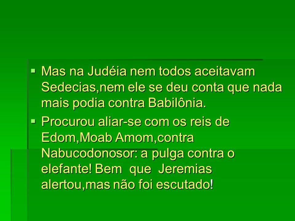 Mas na Judéia nem todos aceitavam Sedecias,nem ele se deu conta que nada mais podia contra Babilônia. Mas na Judéia nem todos aceitavam Sedecias,nem e
