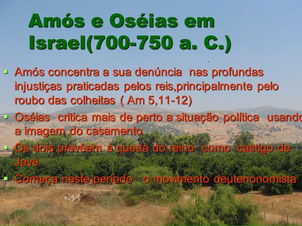 Amós e Oséias em Israel(700-750 a. C.) Amós concentra a sua denúncia nas profundas injustiças praticadas pelos reis,principalmente pelo roubo das colh