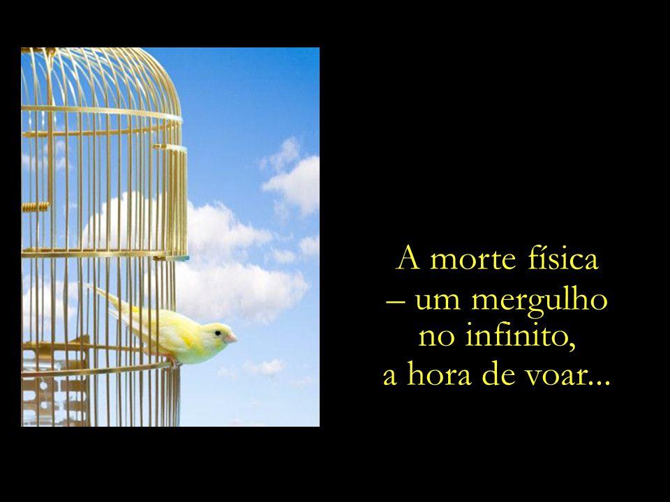 Nosso corpo é apenas a gaiola, enquanto o espírito é o pássaro. Nada tem o pássaro que recear, porém, com a destruição da gaiola.
