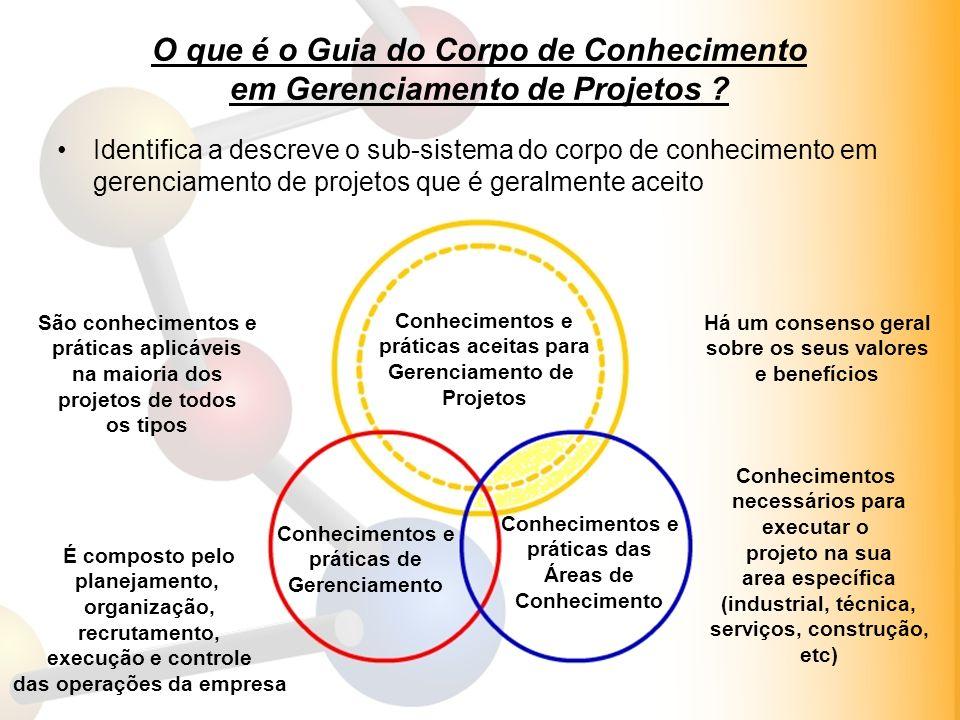 15/1/2014 Professor Leomir J. Borba- professor.leomir@gmail.com –http://professorleomir.wordpress.com 12 O que é o Guia do Corpo de Conhecimento em Ge