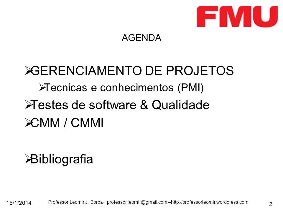 15/1/2014 Professor Leomir J. Borba- professor.leomir@gmail.com –http://professorleomir.wordpress.com 2 GERENCIAMENTO DE PROJETOS Tecnicas e conhecime