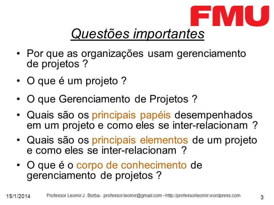 15/1/2014 Professor Leomir J. Borba- professor.leomir@gmail.com –http://professorleomir.wordpress.com 3 Questões importantes Por que as organizações u