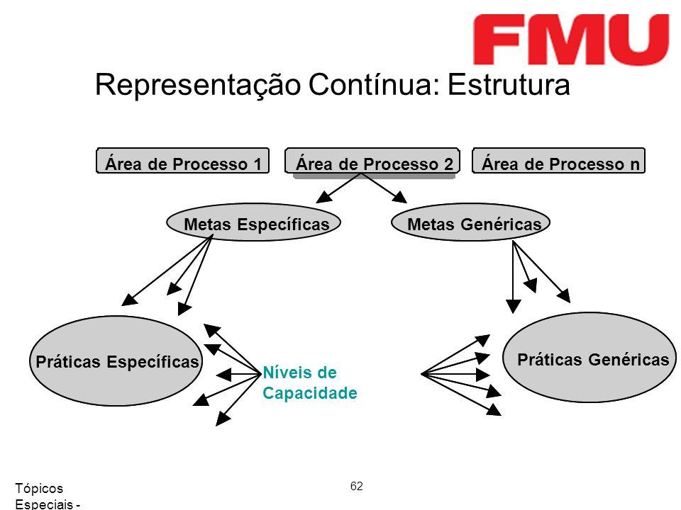 Tópicos Especiais - Qualidade de Software 2008/2 62 Representação Contínua: Estrutura
