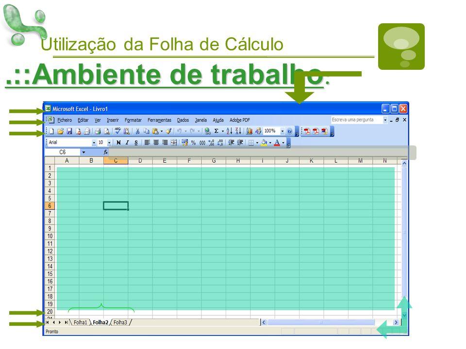 Utilização da Folha de Cálculo.::Ambiente de trabalho :