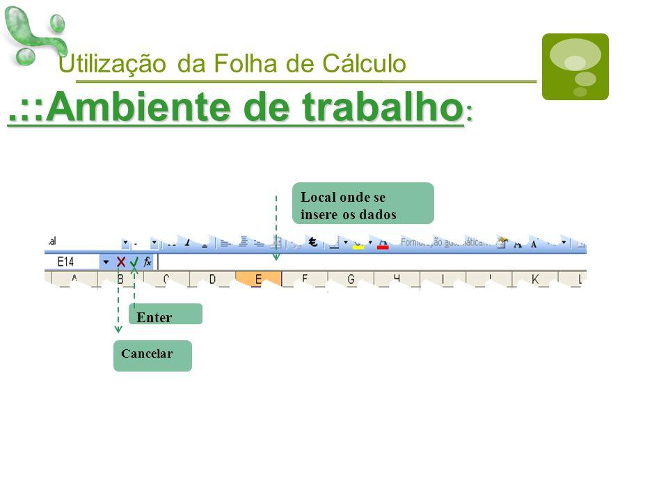 Utilização da Folha de Cálculo.::Ambiente de trabalho : Local onde se insere os dados Enter Cancelar