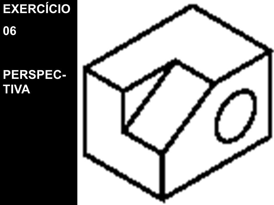 EXERCÍCIO 06 PERSPEC- TIVA