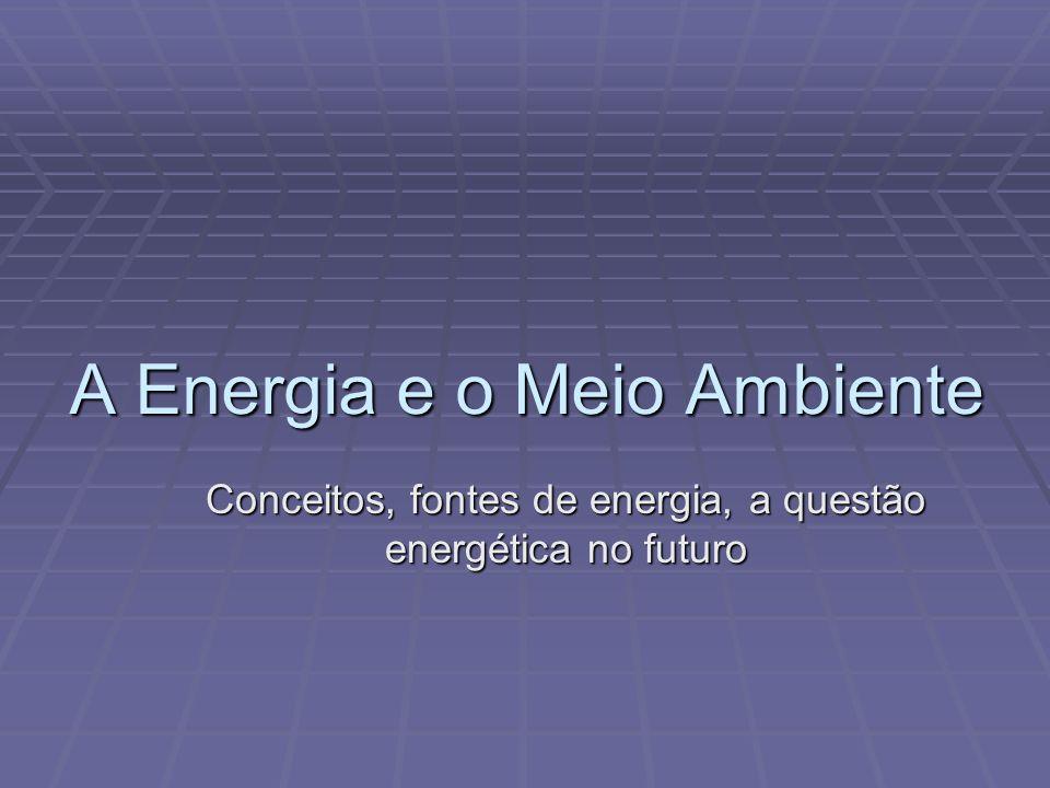 A Energia e o Meio Ambiente Conceitos, fontes de energia, a questão energética no futuro