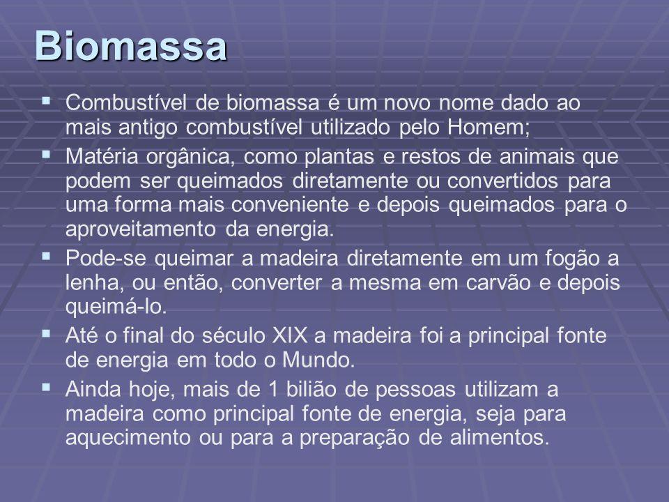 Biomassa Combustível de biomassa é um novo nome dado ao mais antigo combustível utilizado pelo Homem; Matéria orgânica, como plantas e restos de anima
