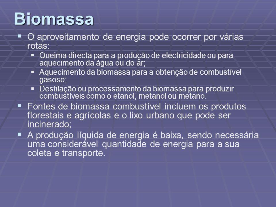 Biomassa O aproveitamento de energia pode ocorrer por várias rotas: Queima directa para a produção de electricidade ou para aquecimento da água ou do