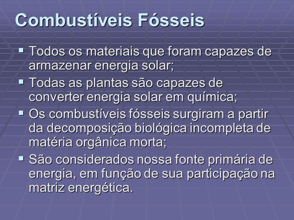 Combustíveis Fósseis Todos os materiais que foram capazes de armazenar energia solar; Todos os materiais que foram capazes de armazenar energia solar;