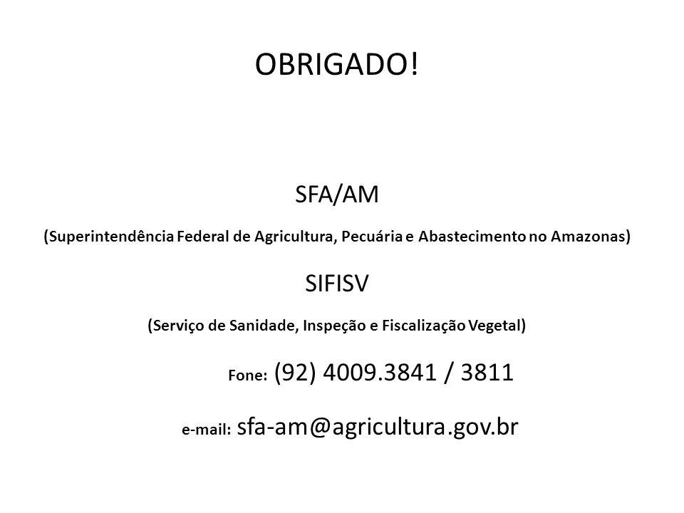 OBRIGADO! SFA/AM (Superintendência Federal de Agricultura, Pecuária e Abastecimento no Amazonas) SIFISV (Serviço de Sanidade, Inspeção e Fiscalização
