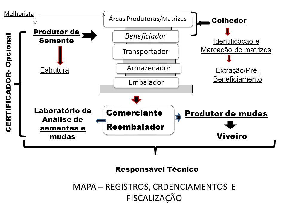 MAPA – REGISTROS, CRDENCIAMENTOS E FISCALIZAÇÃO Áreas Produtoras/ M atrizes Beneficiador Transportador ArmazenadorEmbalador Comerciante Reembalador Pr