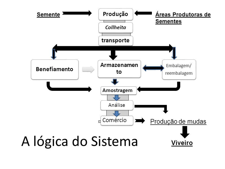 A lógica do Sistema Produção Collheita transporte Benefiamento Armazenamen to Embalagem/ reembalagem Amostragem Análise Comércio Produção de mudas Viv