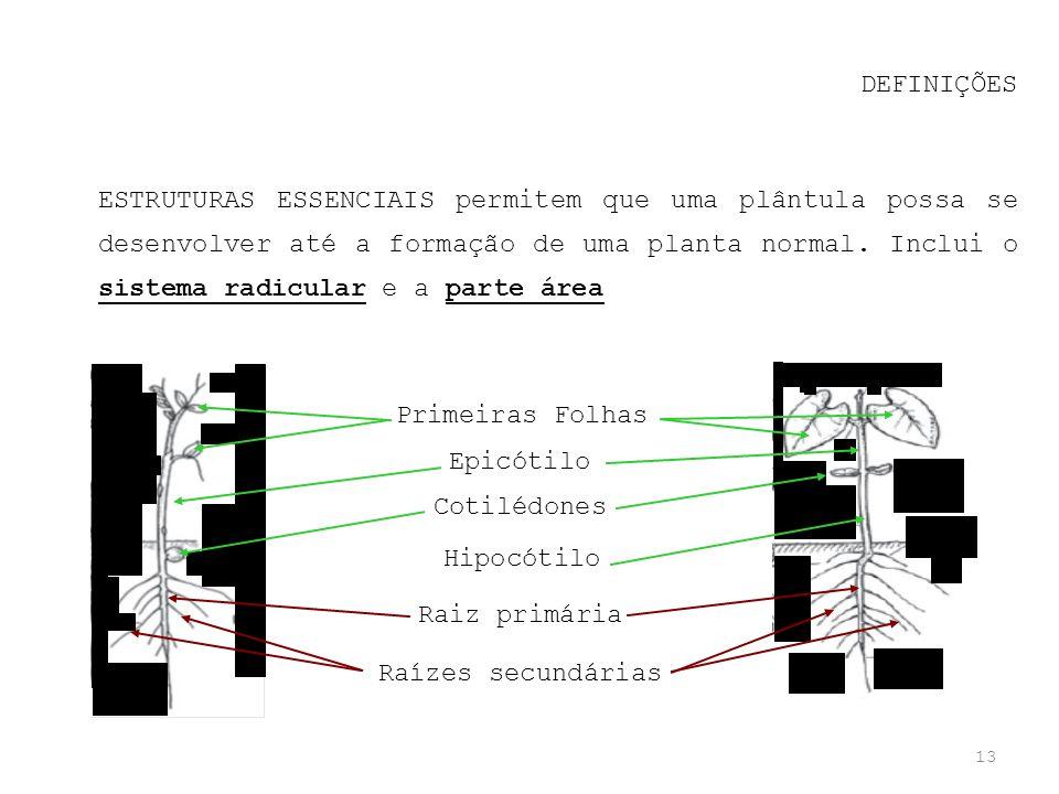13 DEFINIÇÕES ESTRUTURAS ESSENCIAIS permitem que uma plântula possa se desenvolver até a formação de uma planta normal. Inclui o sistema radicular e a