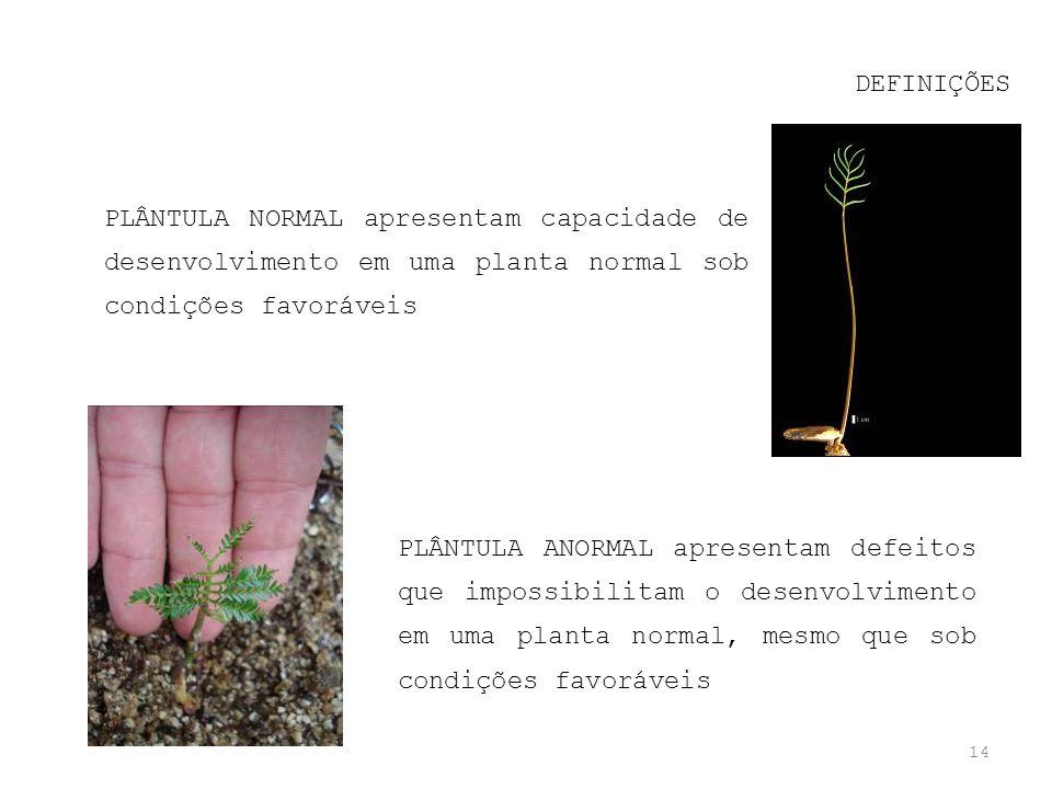 14 DEFINIÇÕES PLÂNTULA NORMAL apresentam capacidade de desenvolvimento em uma planta normal sob condições favoráveis PLÂNTULA ANORMAL apresentam defei