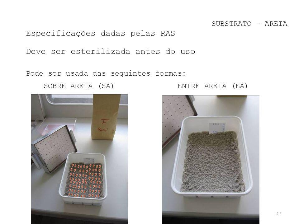 27 SUBSTRATO - AREIA Especificações dadas pelas RAS Deve ser esterilizada antes do uso Pode ser usada das seguintes formas: SOBRE AREIA (SA) ENTRE ARE