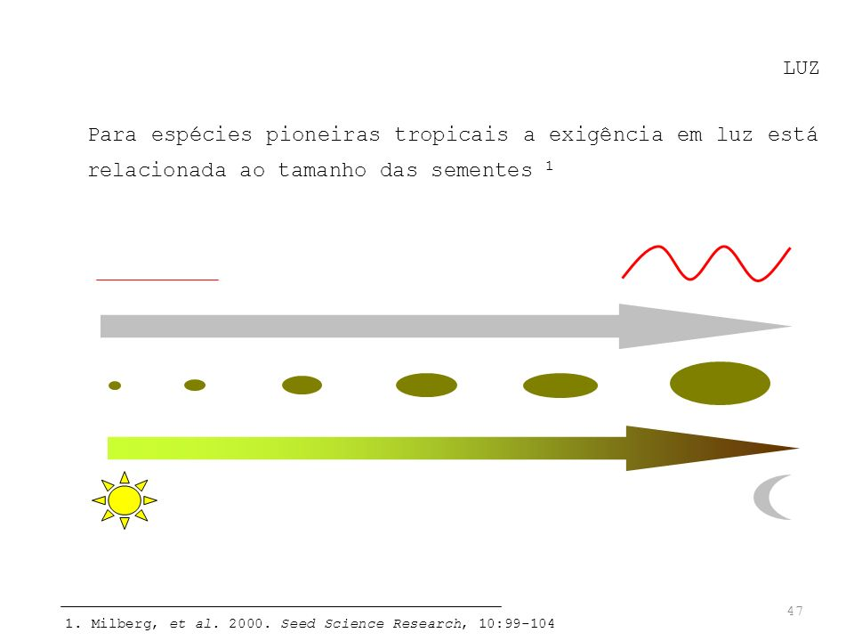 47 LUZ Para espécies pioneiras tropicais a exigência em luz está relacionada ao tamanho das sementes 1 1. Milberg, et al. 2000. Seed Science Research,