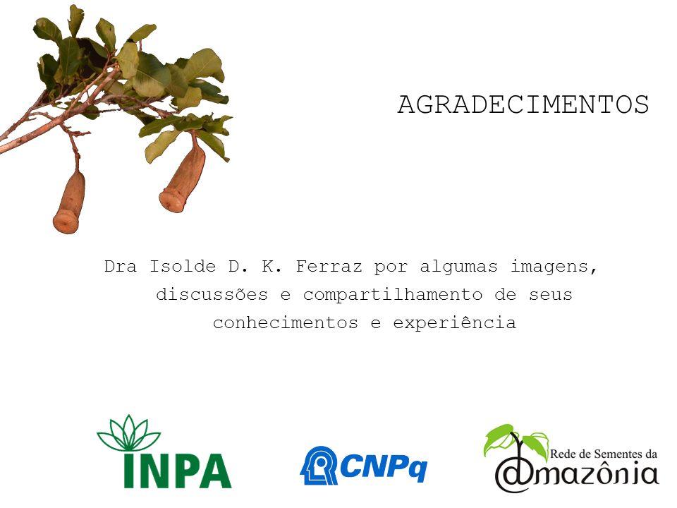 83 AGRADECIMENTOS Dra Isolde D. K. Ferraz por algumas imagens, discussões e compartilhamento de seus conhecimentos e experiência
