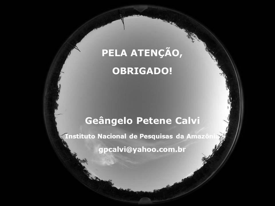 84 PELA ATENÇÃO, OBRIGADO! Geângelo Petene Calvi Instituto Nacional de Pesquisas da Amazônia gpcalvi@yahoo.com.br