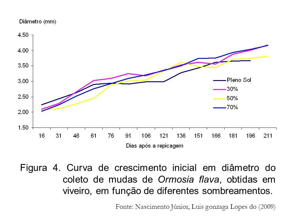28 Figura 4. Curva de crescimento inicial em diâmetro do coleto de mudas de Ormosia flava, obtidas em viveiro, em função de diferentes sombreamentos.