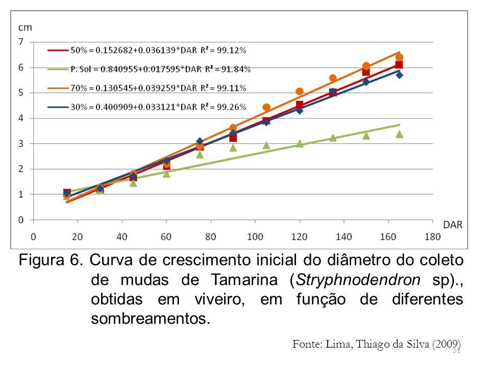 31 Figura 6. Curva de crescimento inicial do diâmetro do coleto de mudas de Tamarina (Stryphnodendron sp)., obtidas em viveiro, em função de diferente