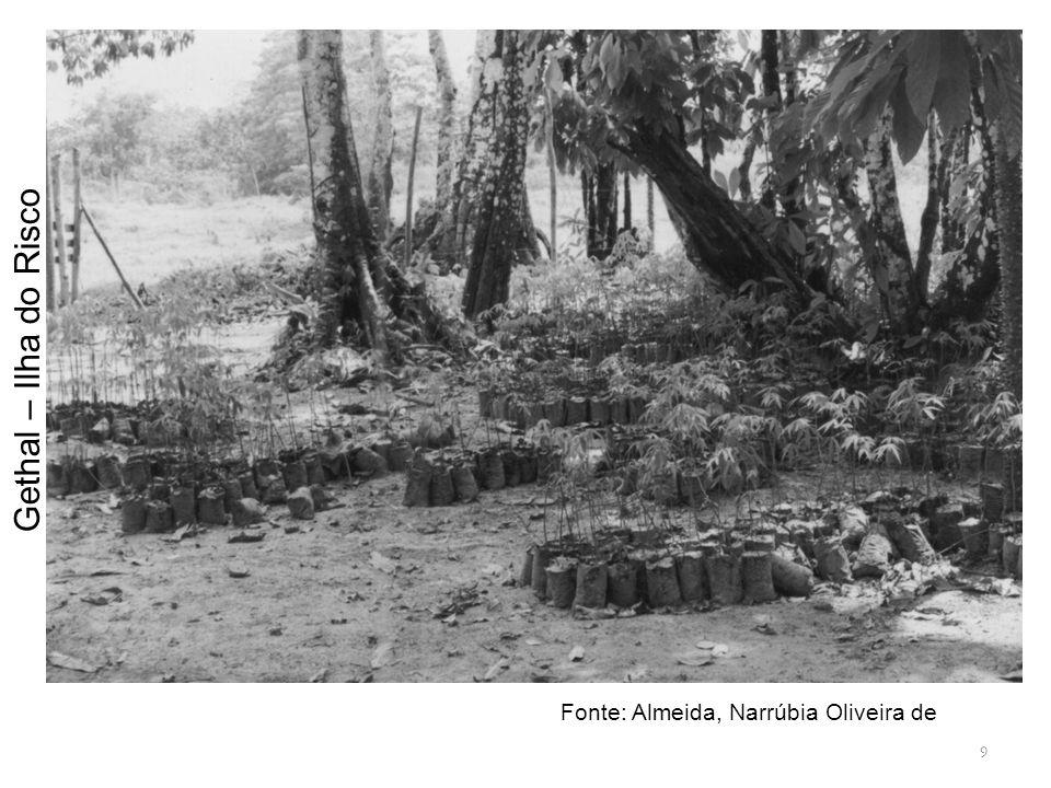 9 Gethal – Ilha do Risco Fonte: Almeida, Narrúbia Oliveira de