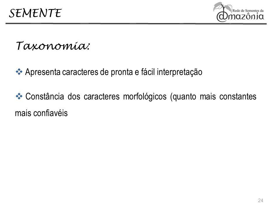 SEMENTE Taxonomia: Apresenta caracteres de pronta e fácil interpretação Constância dos caracteres morfológicos (quanto mais constantes mais confiavéis