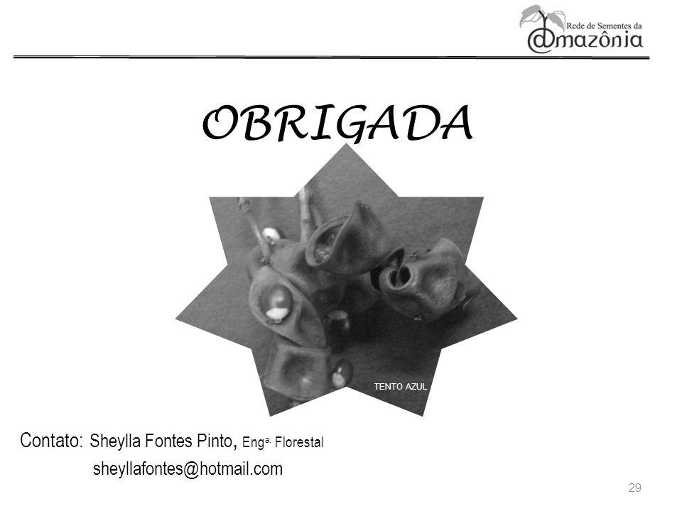 OBRIGADA 29 Contato: Sheylla Fontes Pinto, Eng a. Florestal sheyllafontes@hotmail.com TENTO AZUL