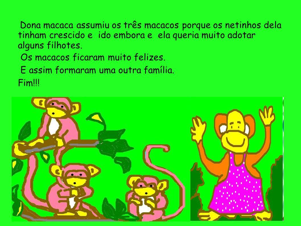 Dona macaca assumiu os três macacos porque os netinhos dela tinham crescido e ido embora e ela queria muito adotar alguns filhotes. Os macacos ficaram