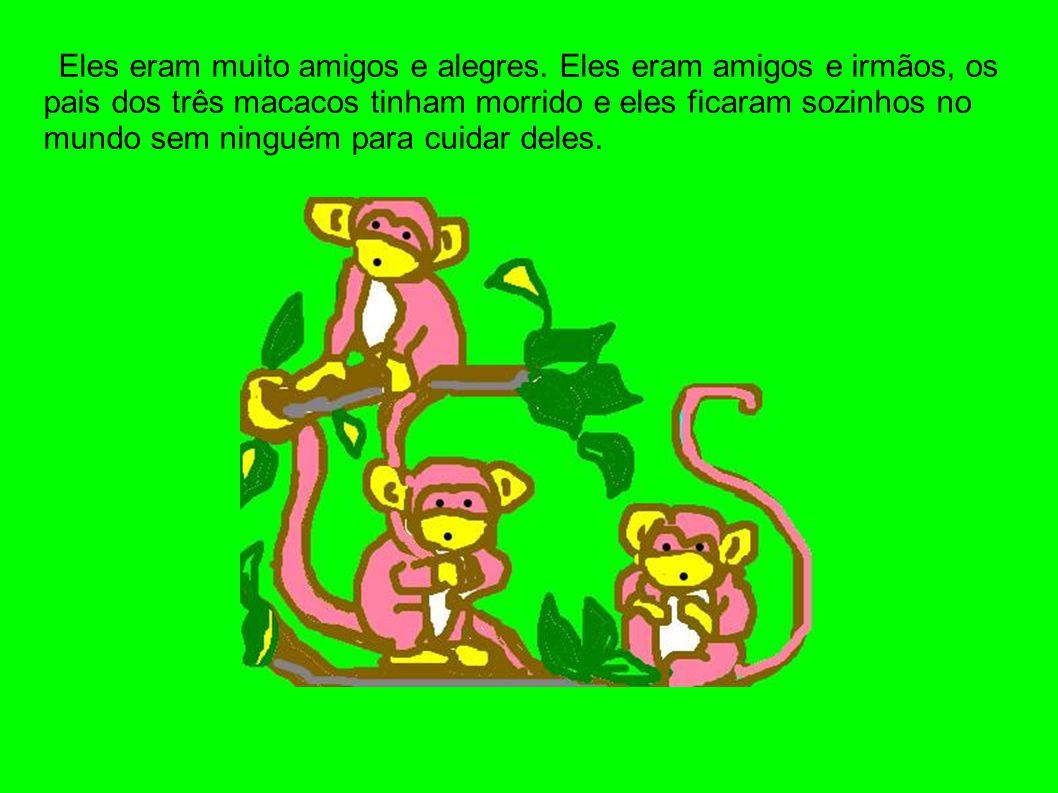 Eles eram muito amigos e alegres. Eles eram amigos e irmãos, os pais dos três macacos tinham morrido e eles ficaram sozinhos no mundo sem ninguém para