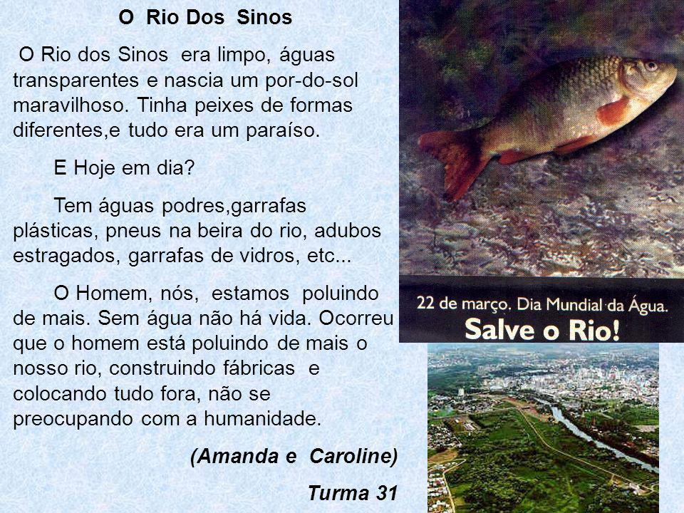 O Rio dos Sinos O Rio dos Sinos está sujo. Nós jogamos lixos nele, assim fica sujo, cheio de lixo e os peixes morrem por causa da poluição. Ele é sujo