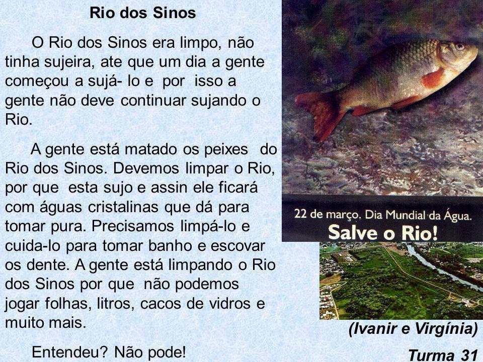 O Rio dos Sinos Para não poluir o Rio dos Sinos, não podemos jogar lixo como: garrafas de vidro, papelão, sacola plástica, pneus. O Rio dos Sinos sem